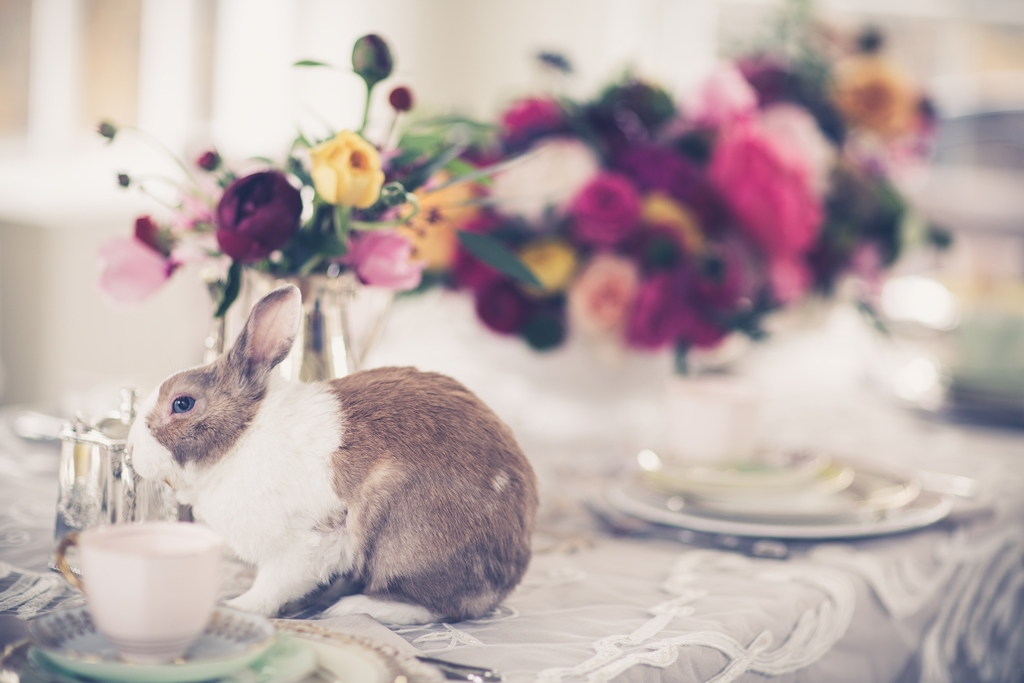 wedding decor with bunnies