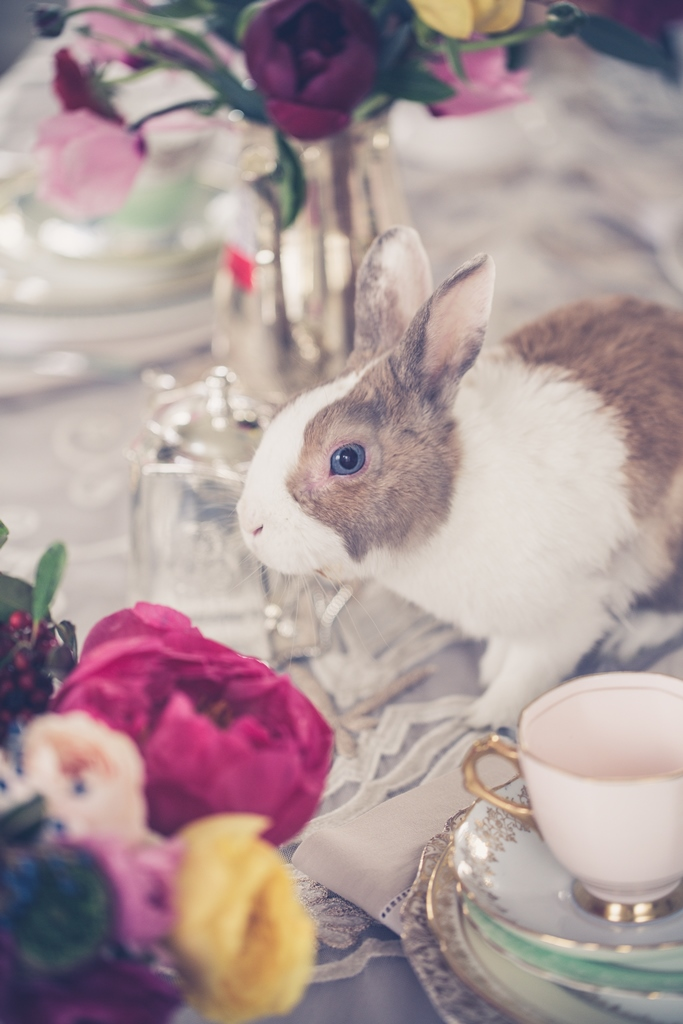 bridal bunny on the table