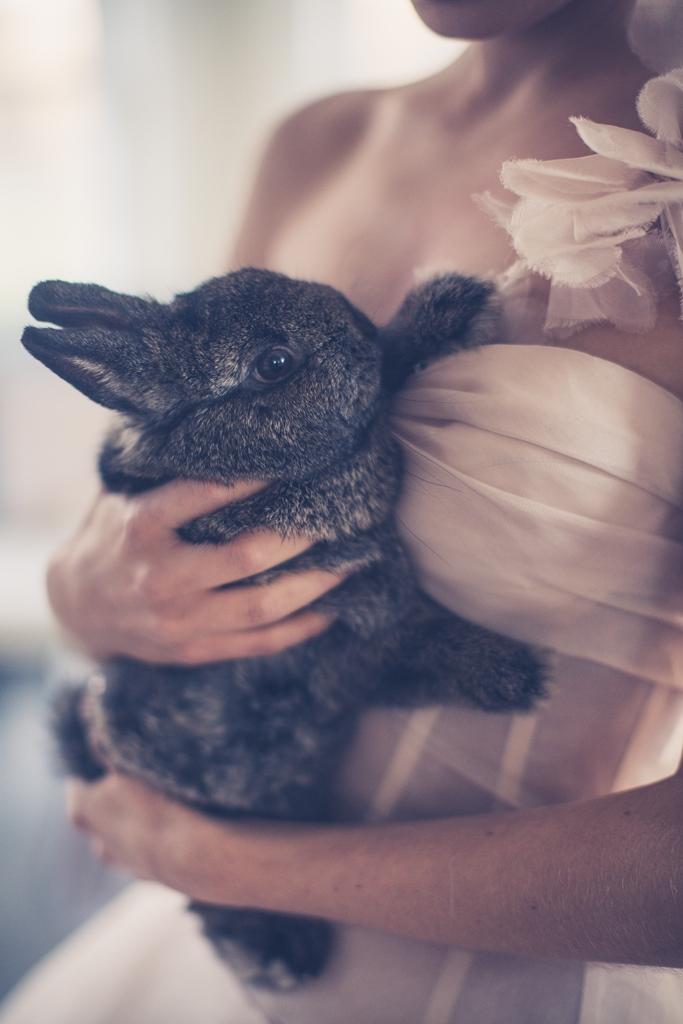 alise in wonderland wedding