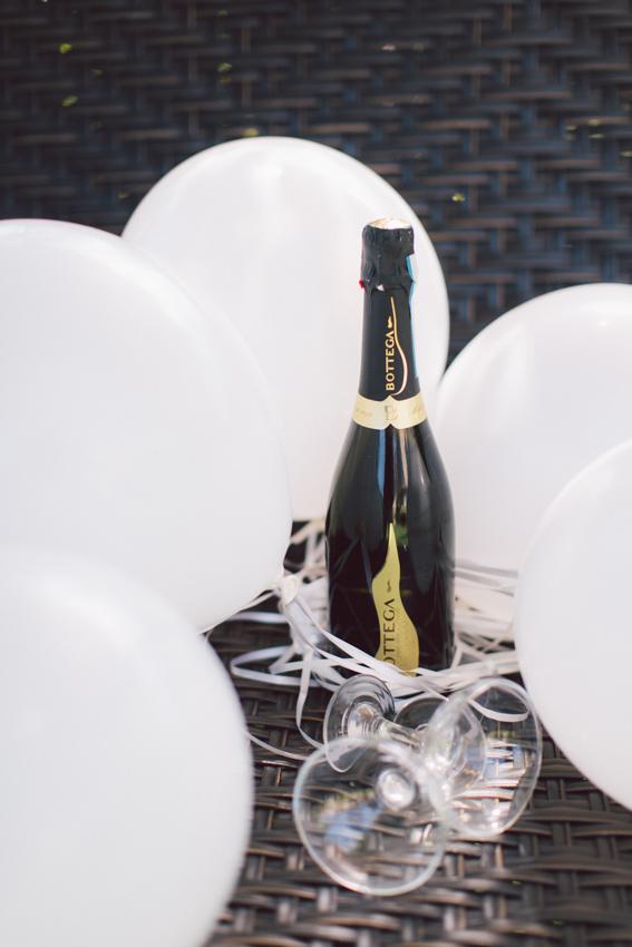 engagement champaign ideas