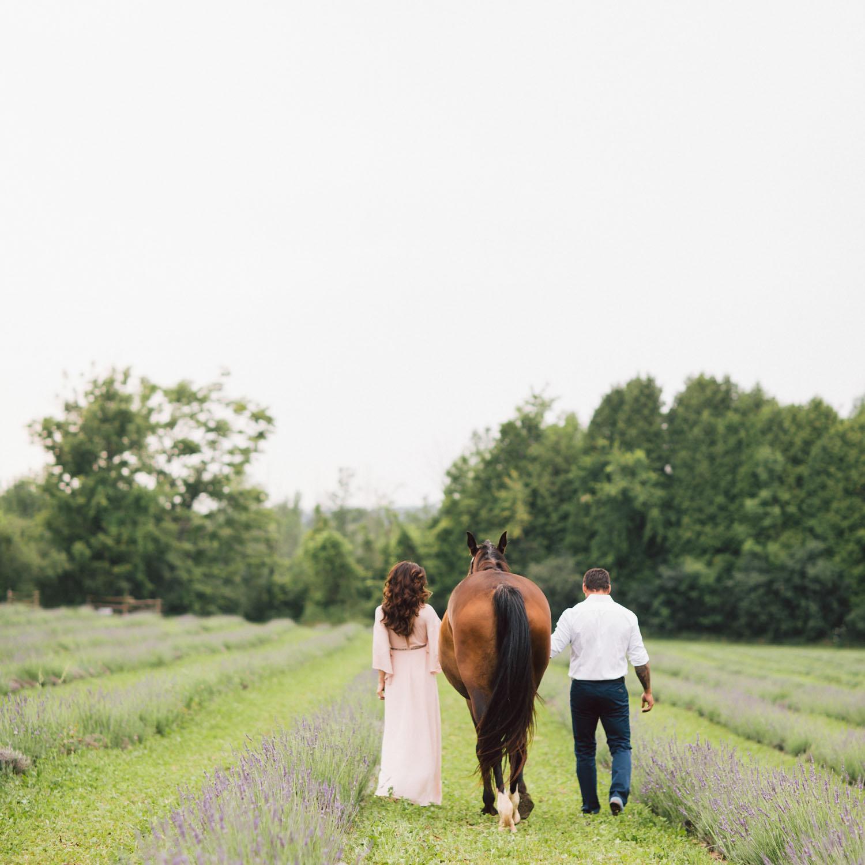 couple walking horse in the feild