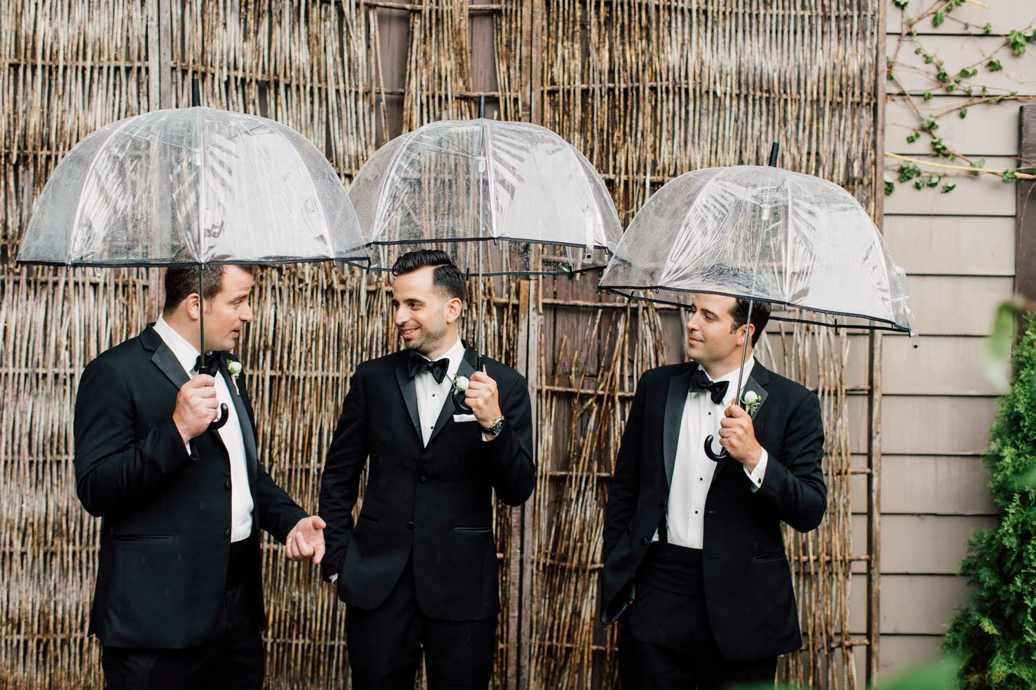wedding pictures with umbrellas