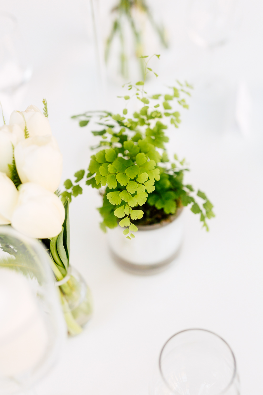stemz flowers