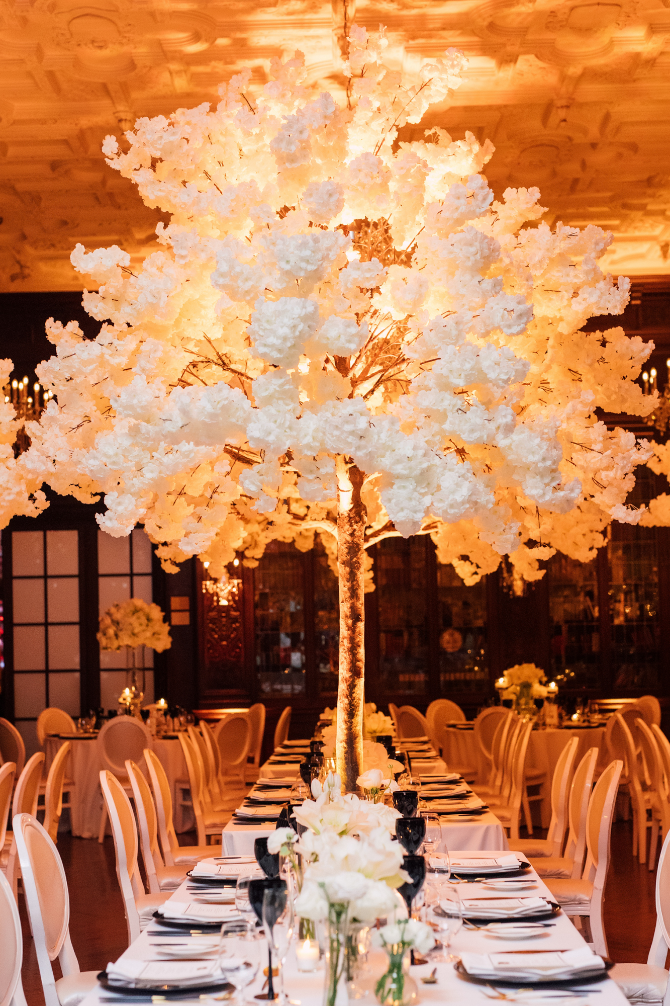 rachel clingen white wedding trees