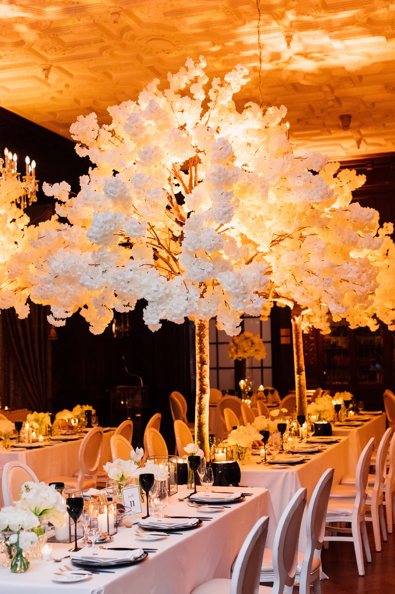 rachel clingen wedding trees