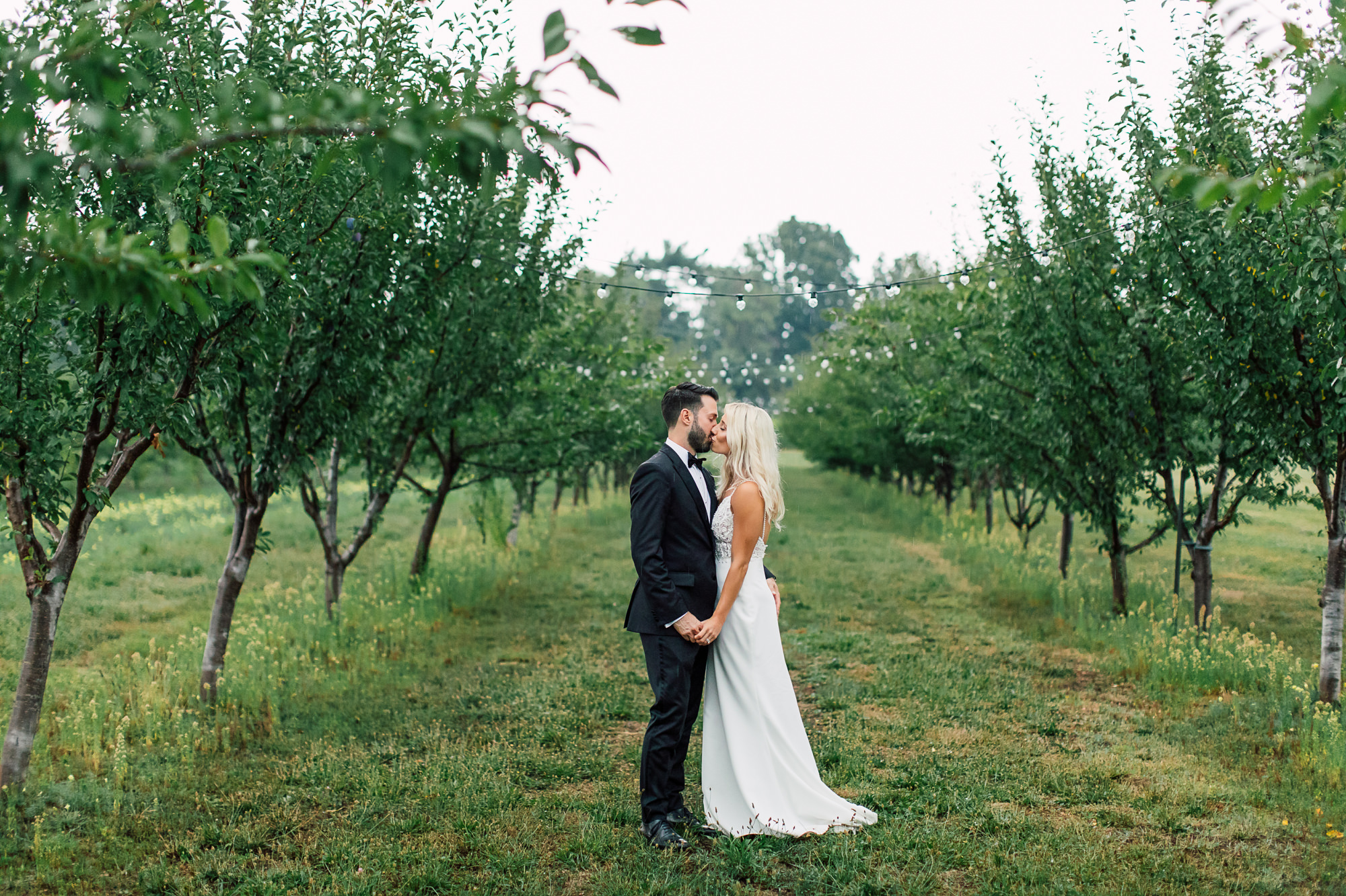 vineyard bride groom portrait